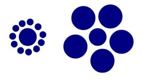 Ebbinghaus Optical Illusion Circles
